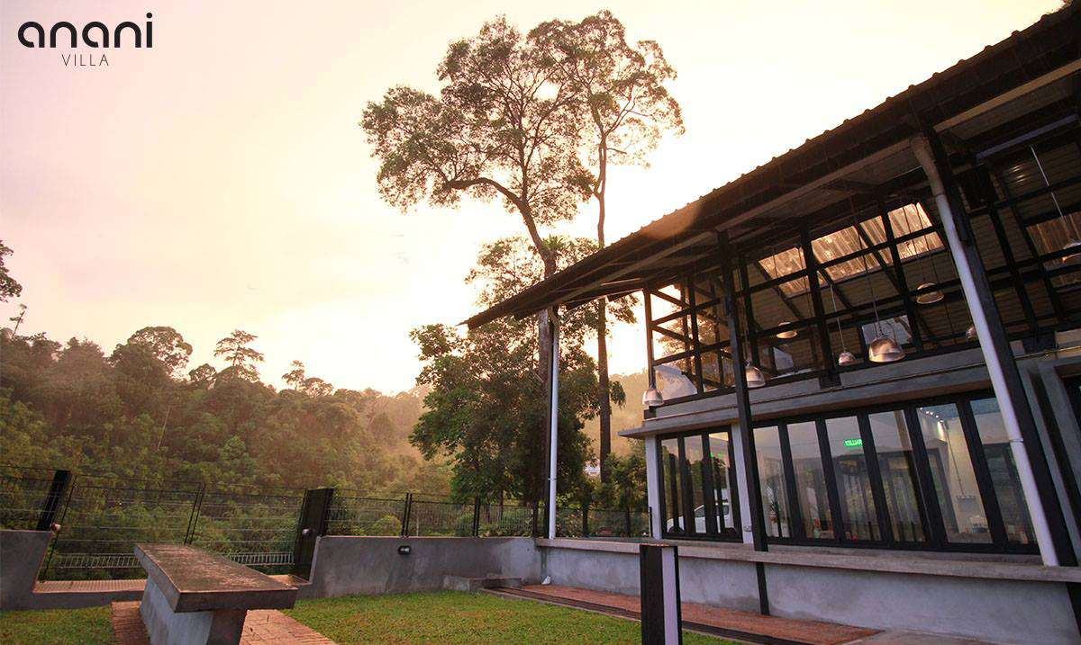 P Yoga Nature Eco Retreat Anani v3