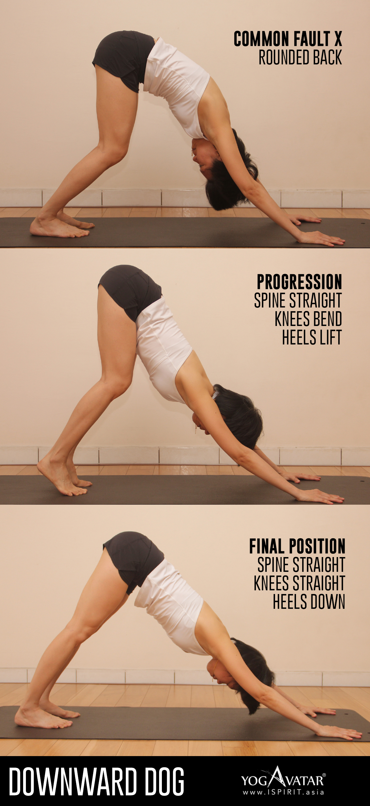 Downward Facing Dog Heels